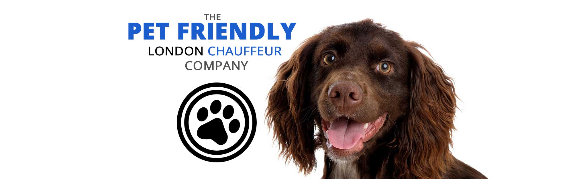pet-friendly-london-chauffeur-company